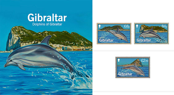 Dolphins of Gibraltar